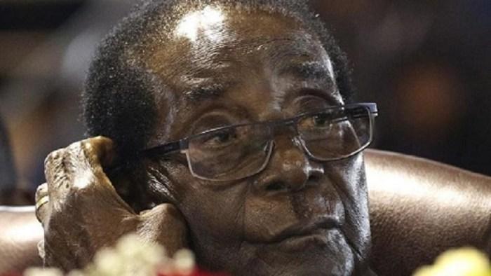 Thieves splurge Mugabe's $150,000 cash on homes, cars, animals