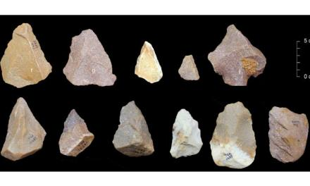Ancient Tools Found in India Tell a New Story of When Humans Migrated from Africa