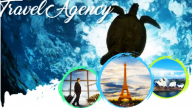 Welcome to Swell Travel Agency / Consultant