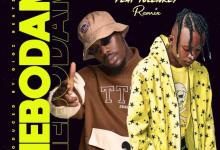Bra Alex – Mebodam Remix Ft Tulenkey (Prod By Gigz Beatz)