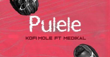 Kofi Mole – Pulele Ft Medikal (Prod. by Bpm Boss)