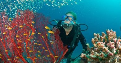 UNDP launches Ocean Innovation Challenge
