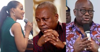 EC, Akufo-Addo file witness statements to Mahama's election petition