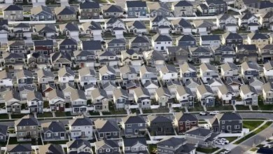 US is diversifying, white population shrinking