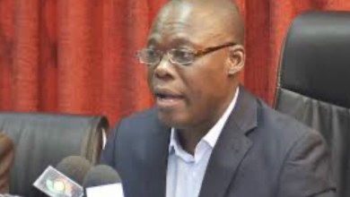Photo of Pettiness preventing NPP from acknowledging our work – Fifi Kwetey fumes