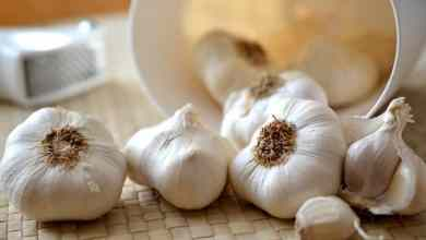 Photo of 15 Surprising Health Benefits of Drinking Garlic Juice You'll Wish You'd Known