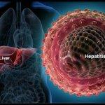Ghana risks losing productive youth to Hepatitis – Medical Professor -
