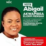 I'll Win Fanteakwa South Seat For NDC—Elorm Mensah