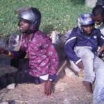 Koala Robbery suspects linked to NPP Chieftain