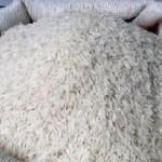 GCAP beneficiaries harvest 1.7 tonnes of rice worth GH¢2.2m