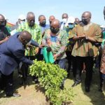You spent GHS25m on tree planting 'k3k3' whiles free SHS suffer — Group blasts Akufo-Addo