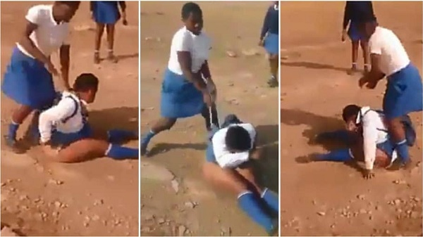 Female Student Fight Colleaugue