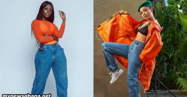 Sister Derby finds herself in hassle after attempting to taunt Fella Makafui