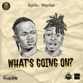 Ayanfe – What's Going On (W.G.O) Ft. Mayorkun