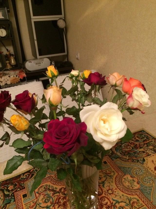 цветы от елены (24)