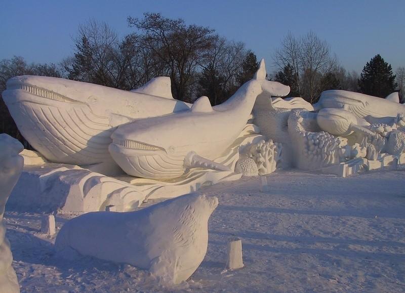 19. А вот и снежные киты.