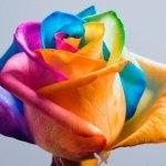 Как покрасить букет живых цветов?