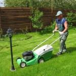 Оформляем двор зеленым газоном.