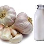 Готовим эликсир молодости из молока с чесноком.