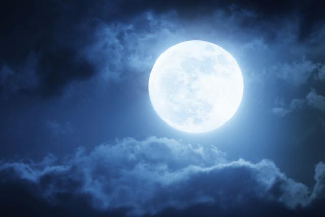 lunie-dni