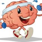 Очищаем сосуды головного мозга.