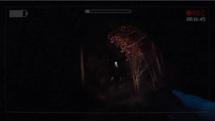 Slender: The Arrival forest scene