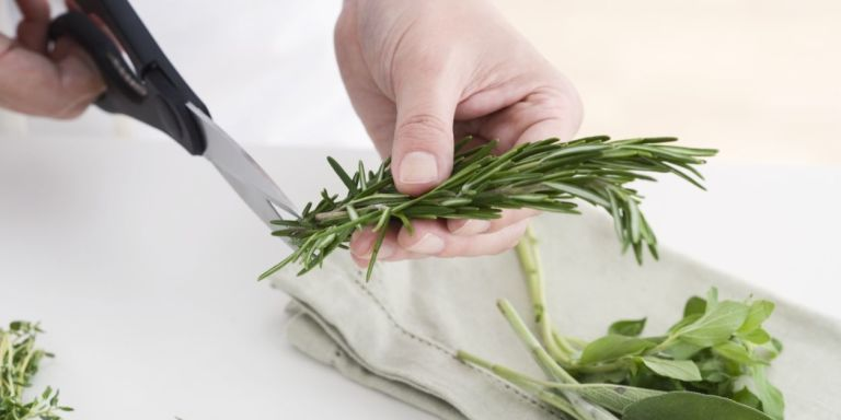 Cutting up herbs with kitchen scissors.