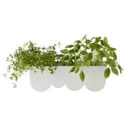 ($5, ikea.com) Clay pots have nothing on this scalloped planter. They're so cheap, you could gift a few to kickstart that herb garden your mom has been talking about putting together.