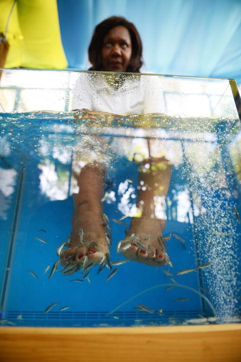 Fishy beauty treatments
