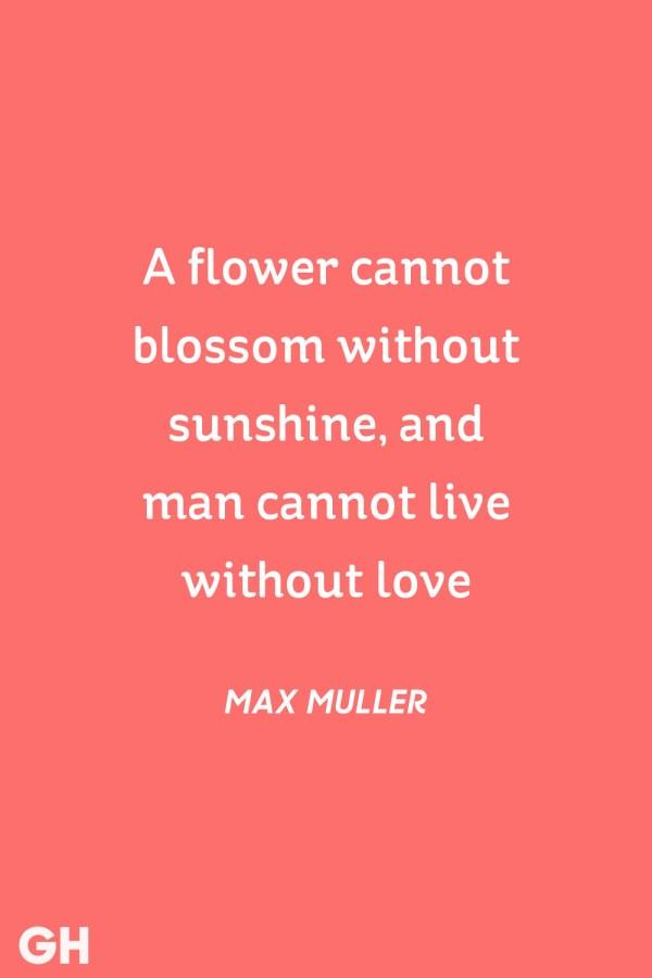 30 Cute Valentine's Day Quotes - Best Romantic Quotes ...