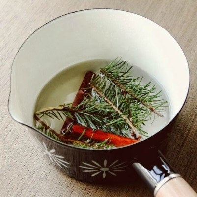Get the christmas tree smell without the hassle ashley wilson as the mixture simmers it will fill your home with happy nostalgic scents and fool yourself into thinking you bought a real tree this year solutioingenieria Choice Image