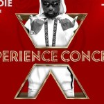 eXperience concert, vgma, vgma19