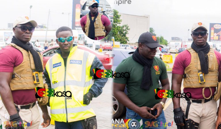 Best security at Ghana Meets Naija concert as patrons feel at home
