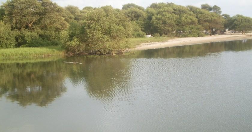 Save Kpeshie Lagoon now-La Development Institute appeals