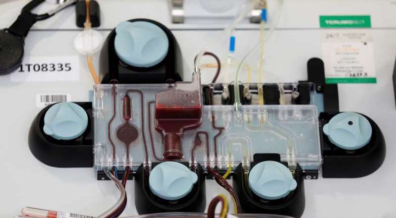 U.S. FDA authorizes use of blood plasma to treat coronavirus