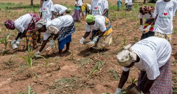 Reward systems for information on smuggled fertilizers instituted