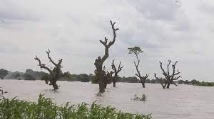 Tamne Dam overflows and destroys farmlands and houses at Tempane