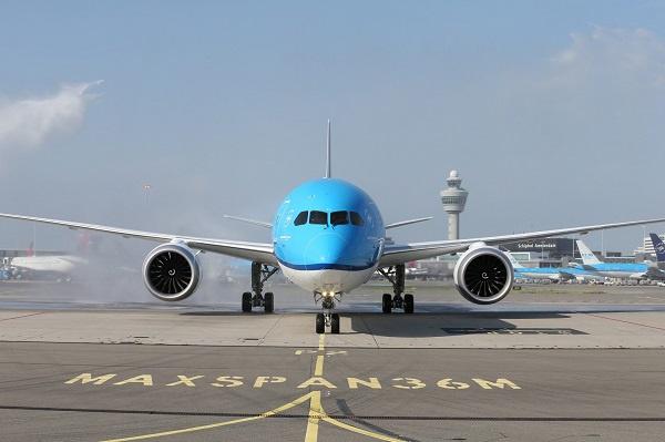 KLM flight aborted at KIA over bird strike