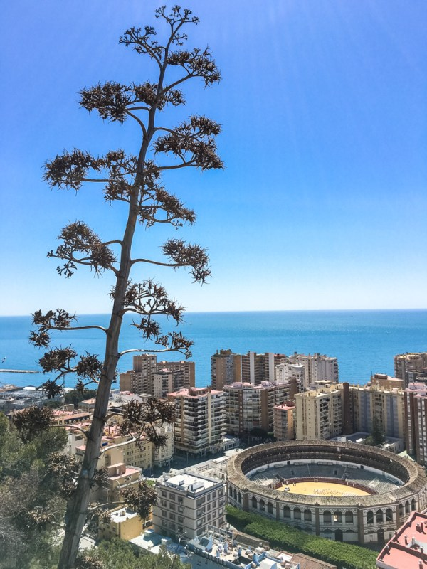 160329_130212_Andalusien