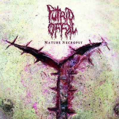 Putrid-Offal-Mature-Nectopsy-01