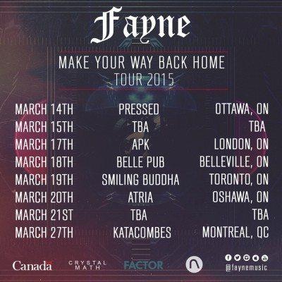 fayne tour poster small