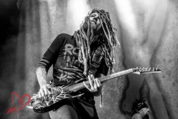 Korn, by Meg Loyal Photography