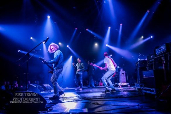 Gin Blossoms by Rick Triana Photography