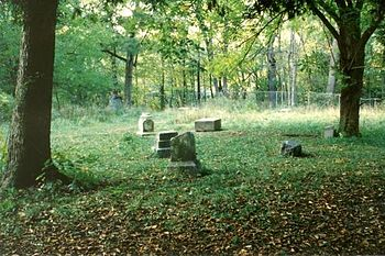Bachelor's Grove Cemetery: group of monuments, southeast quadrant, looking southwest
