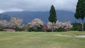 桜まつりゴルフ合宿#13