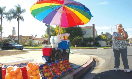 LA City Sidewalk Vending Survey