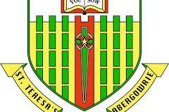 St. Teresa's College of Education Courses