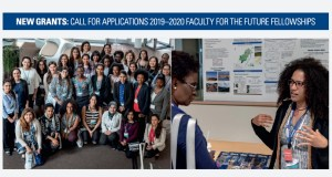 Schlumberger Foundation Faculty for the Future Fellowship
