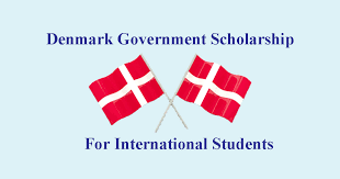 Danish Government Scholarship