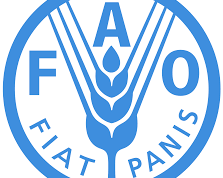 Food and Agriculture Organization Recruitment for Human Resources Associate